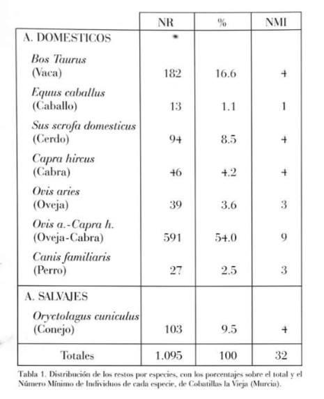 NOTICIAS-imagen9